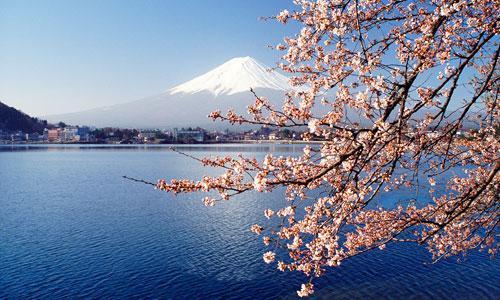 [留学流程]办理日本留学签证的流程