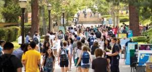 留学生的塑料友谊:一边说不留学,一边偷偷抢考位