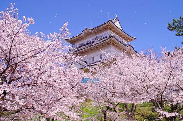 日本留学coe签证的发放时间段