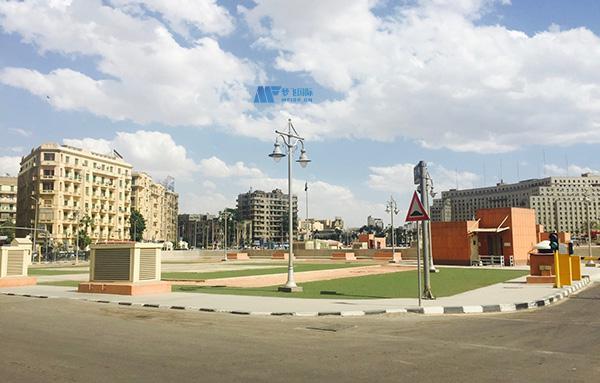 [埃及院校] Alexandria University 亚历山大大学