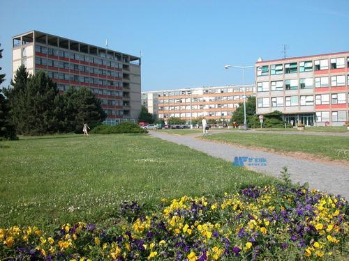 [捷克院校] Czech University of Life Sciences, Prague 捷克生命科学大学