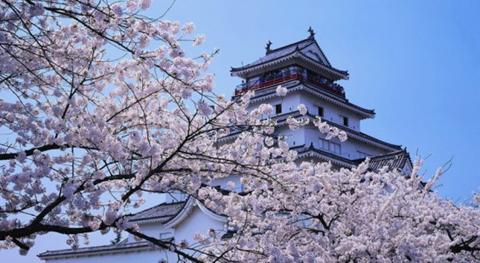 日本大学留学申请书讲解