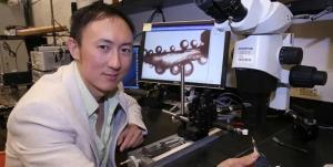 MIT华裔博士:这两个能力一定要教给孩子,它与赚钱多少无关