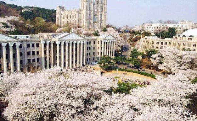 [韩国院校] Kyung Hee  University 庆熙大学