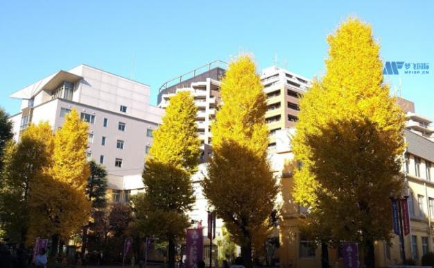 [日本院校] Taisho University 大正大学