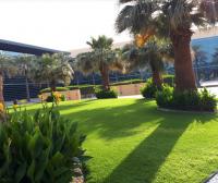 [阿联酋院校] 扎耶德大学 Zayed University